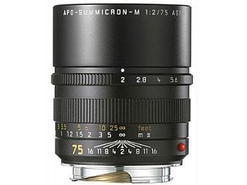 Leica APO-Summicron-M 2.0/75 Lens