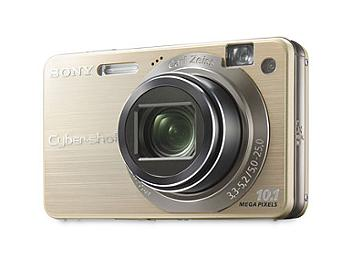 Sony Cyber-shot DSC-W170 Digital Camera - Gold