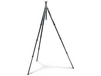 Gitzo GT2941 Series 2 + Tripod 4 Leg Sections