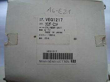 Panasonic VEG1217 Video Head