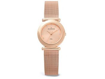 Skagen 107SRRDR Steel Ladies Watch