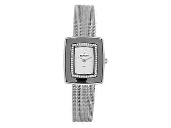 Skagen 463SSS Steel Ladies Watch