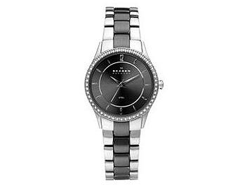 Skagen 347SSMX Steel Ladies Watch