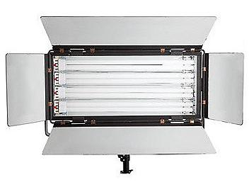 Dynacore DSRIV-55Wx2 Fluorescent Soft Light
